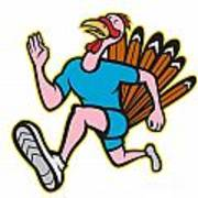 Turkey Run Runner Side Cartoon Isolated Poster by Aloysius Patrimonio