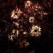 Turner's Flowers Poster