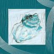 Turquoise Seashells Xxiv Poster