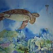 Turtle And Jelly Fish Poster
