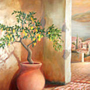 Tuscan Lemon Tree Poster