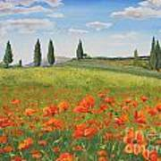 Tuscan Poppies-b Poster
