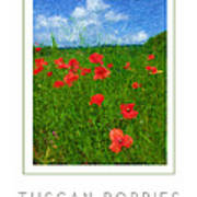 Tuscan Poppies Poster Poster