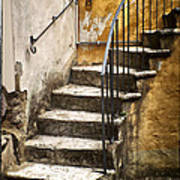Tuscan Staircase Poster