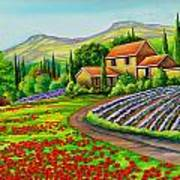 Tuscany Lavender  Poster
