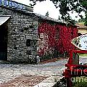 Tuscany Vineyard  Poster