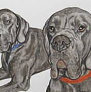Two Cool Danes Poster