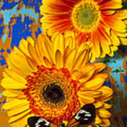 Two Golden Mums With Butterfly Poster by Garry Gay
