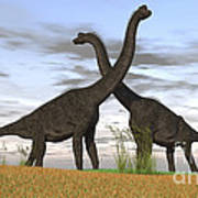 Two Large Brachiosaurus In Prehistoric Poster