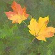 Two Leafs In Autumn Poster