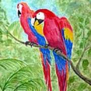 Two Macaws Poster