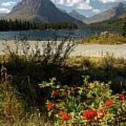 Two Medicine Lake In Glacier Poster