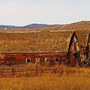 Two Old Barns Near Thorp  Wa Poster