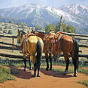 Two Saddle Horses Poster