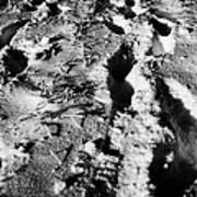 two sets of fresh footprints crossing deep snow in field Forget Saskatchewan Canada Poster by Joe Fox