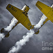 Two Soaring Harvards Poster