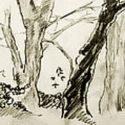 Two Tree Drawing Poster