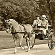 Two Wheel Cart Poster by Wayne Sheeler