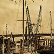 Tybee Island Shrimp Boats Poster
