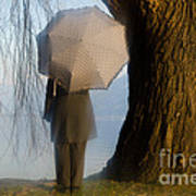 Umbrella And Tree Poster