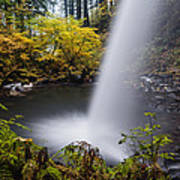 Unique View Of Ponytail Falls Poster