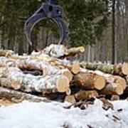 Unloading Firewood 3 Poster