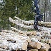 Unloading Firewood 4 Poster