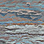 Untamed Sea 1 Poster by Carol Cavalaris
