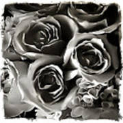 Bw Rose Bouquet 2 Poster