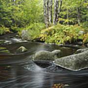 Upper Bear River In Early Autumn Nova Poster