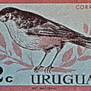 Uruguay Bird Stamp - Circa 1962 Poster