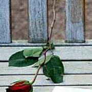 Valentine Rose. Poster