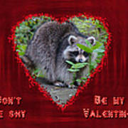 Valentine's Day Greeting Card - Raccoon Poster