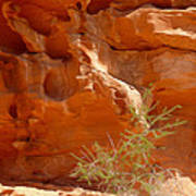 Valley Of Fire Rock Formation Poster