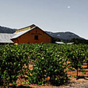 Valley Of The Moon Sonoma California 5d24485 V2 Poster by Wingsdomain Art and Photography