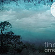 Valley Under Moonlight Poster