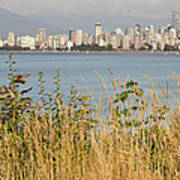 Vancouver Bc Downtown From Hasting Mills Park Poster