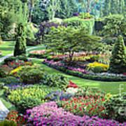Vancouver Butchart Sunken Gardens Beautiful Flowers No People Panorama Poster