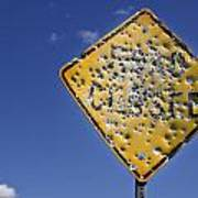 Vandalized Road Sign Many Bullet Holes Poster