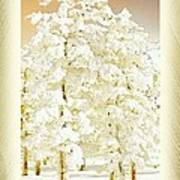 Vanilla Icing Poster