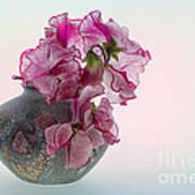 Vase Of Pretty Pink Sweet Peas 2 Poster