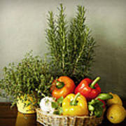 Vegetables And Aromatic Herbs In The Kitchen Poster