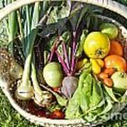 Veggie Delight Poster
