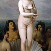 Venus Anadyomene Poster