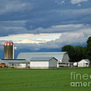 Verdant Farmland Poster