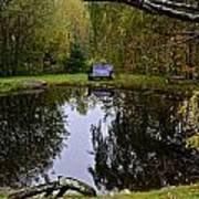 Vermont Pond In Autumn Poster