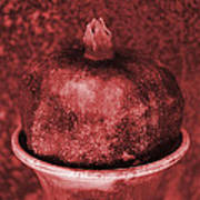 Very Red Pomegranate Poster