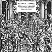 Vesalius Teaching Anatomy Poster
