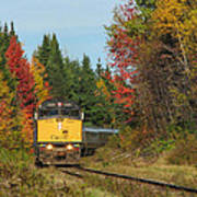 Fall Colours With Train Poster