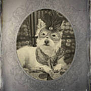 Victorian Westie Poster